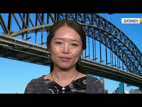 Pan Wang discusses how Chinese singles are shaping the economy