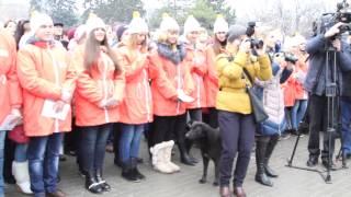 Собака едва не сорвала Олимпийскую акцию в Ростове