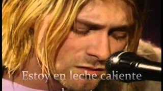 Nirvana - Pennyroyal Tea - Sub. Español