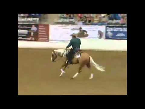 NRBC 2011 Classic Finals - Shawn Flarida on Shine Chic Shine - 231