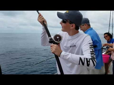Captain Murphy's/Murphy's Law Half Day Deep Sea Fishing 07/08/17