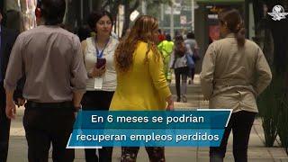 El Presidente Andrés Manuel López Obrador detalló que de seguir con esa tendencia, a más tardar en seis meses regresarán los 20 millones 550 empleos que se tenían registrados en el IMSS antes de la pandemia
