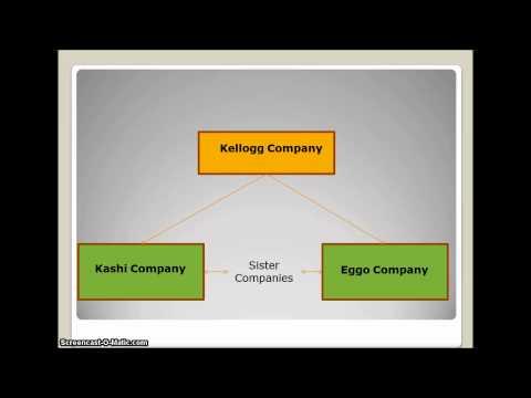 Company Hierarchy Terminology