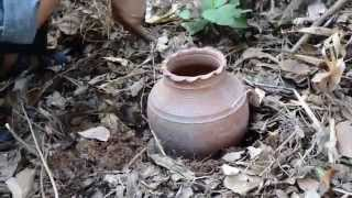Permaculture - Pot Irrigation