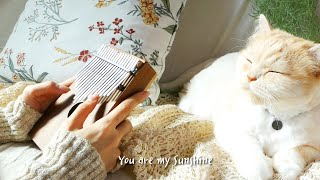 You Are My Sunshine - Kalimba cover.