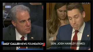 Hawley Mocks The DNC For Their Attempts To Push The Steele Dossier