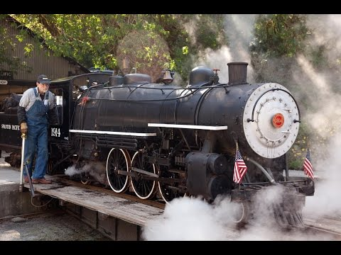 "Swanton Pacific Railroad Live Steam 19"" gauge"