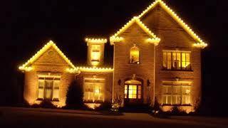 White Wire LED Christmas Lights