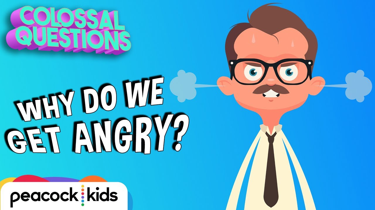 Why Do We Get Angry? | COLOSSAL QUESTIONS - YouTube