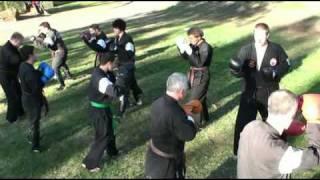 Zen Do Kai State Training May 2010