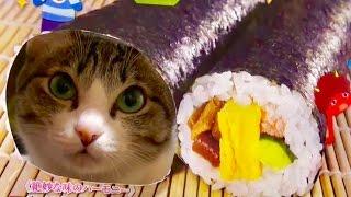 食べるのがもったいない猫恵方巻、斬新な方法で海苔に巻かれる