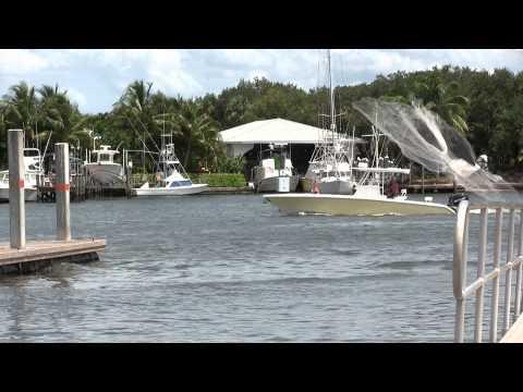 Edgewater Property Realty Stuart, Florida