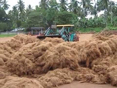 COCONUT FIBER PROCESSING