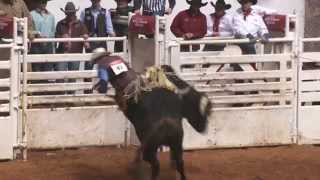 Video 2015 Bulls' Night Out Intro - Fort Worth Stock Show & Rodeo download MP3, 3GP, MP4, WEBM, AVI, FLV November 2017