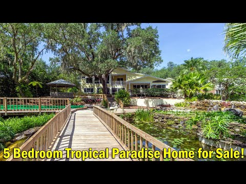 5 Bedroom Tropical Paradise Home For Sale In Temple Terrace, Florida