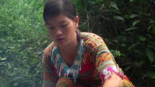 Survival Skills - Primitive Girl Catch Fish And Cooking Fish Meet Forest People