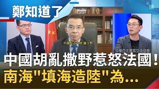 胡亂撒野惹怒法國!法參議員力挺台灣
