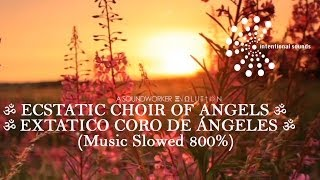 ॐ ECSTATIC CHOIR OF ANGELS ➠ EXTATICO CORO DE ÁNGELES ॐ