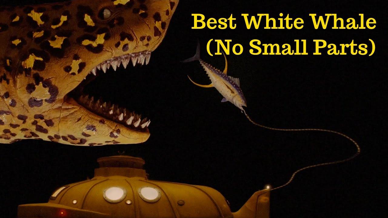 no small parts - best white whale (jaguar shark, the life aquatic