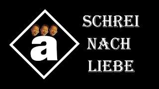 Matt Heafy (Trivium) - Die Ärzte - Schrei Nach Liebe I GERMAN Acoustic Cover