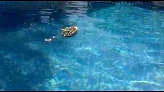 Playmobil Bote de Rescate 4823 con motor 7350