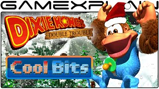 Cool Bits - Donkey Kong Country 3