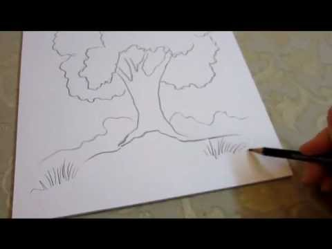 How To Draw A Tree Easy Quick And Simple Youtube