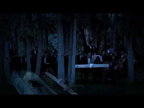 Spencer Stanley - Midnight Orchestra