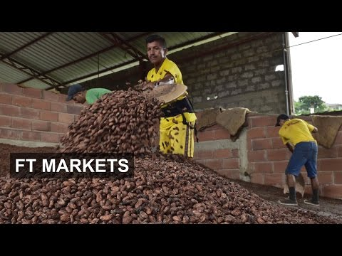 Cocoa futures war | FT Markets