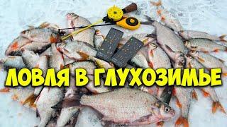 Ловля белой рыбы со льда Узнал секрет и начал ловить