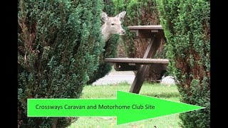 Arrival video for Crossways CMC, Moreton Camping & Caravanning Club and Five Cross CL