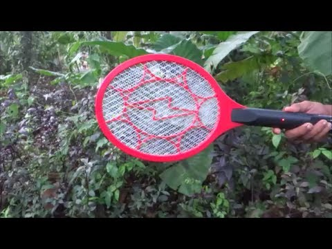 Killing hundreds of mosquitoes in minutes.Keep the speakers on !