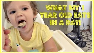 what my one year old eats in a day