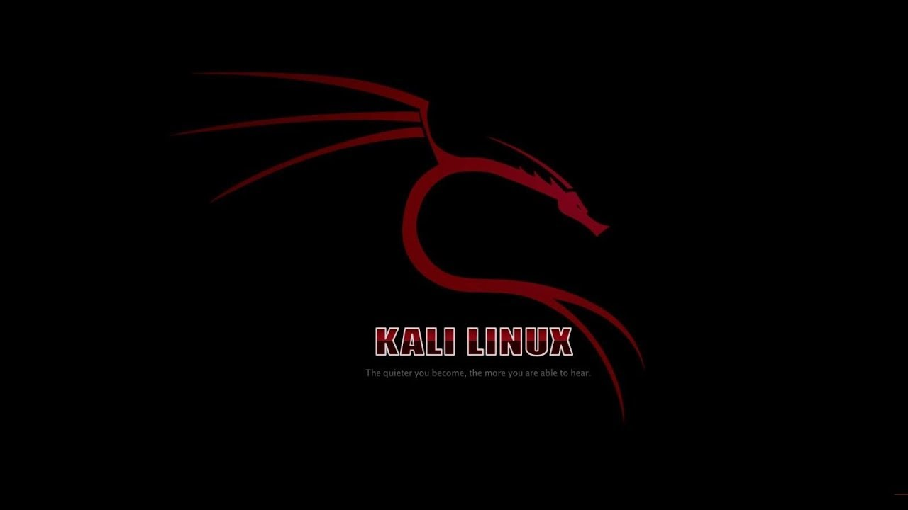 Learn backtrack and kali linux video tutorial training course dvd.