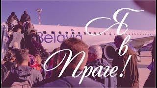 Я в Праге! Впервые летела Belavia. Прага встретила солнцем. #прага #чехия