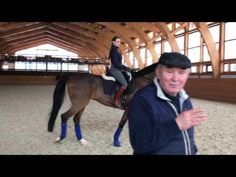 Как сделать пассаж на лошади