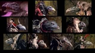 Skeksis- Fake Documentary