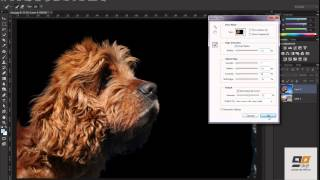 How to extract image in Photoshop CC [BASIC]