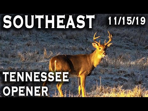 Southeast | Tennessee Opener
