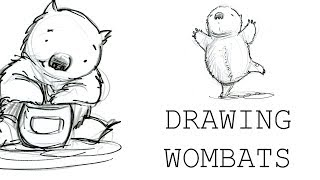 Drawing Wombats