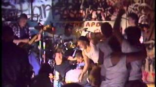 Amarillo Hardcore - The Terror Live 1986