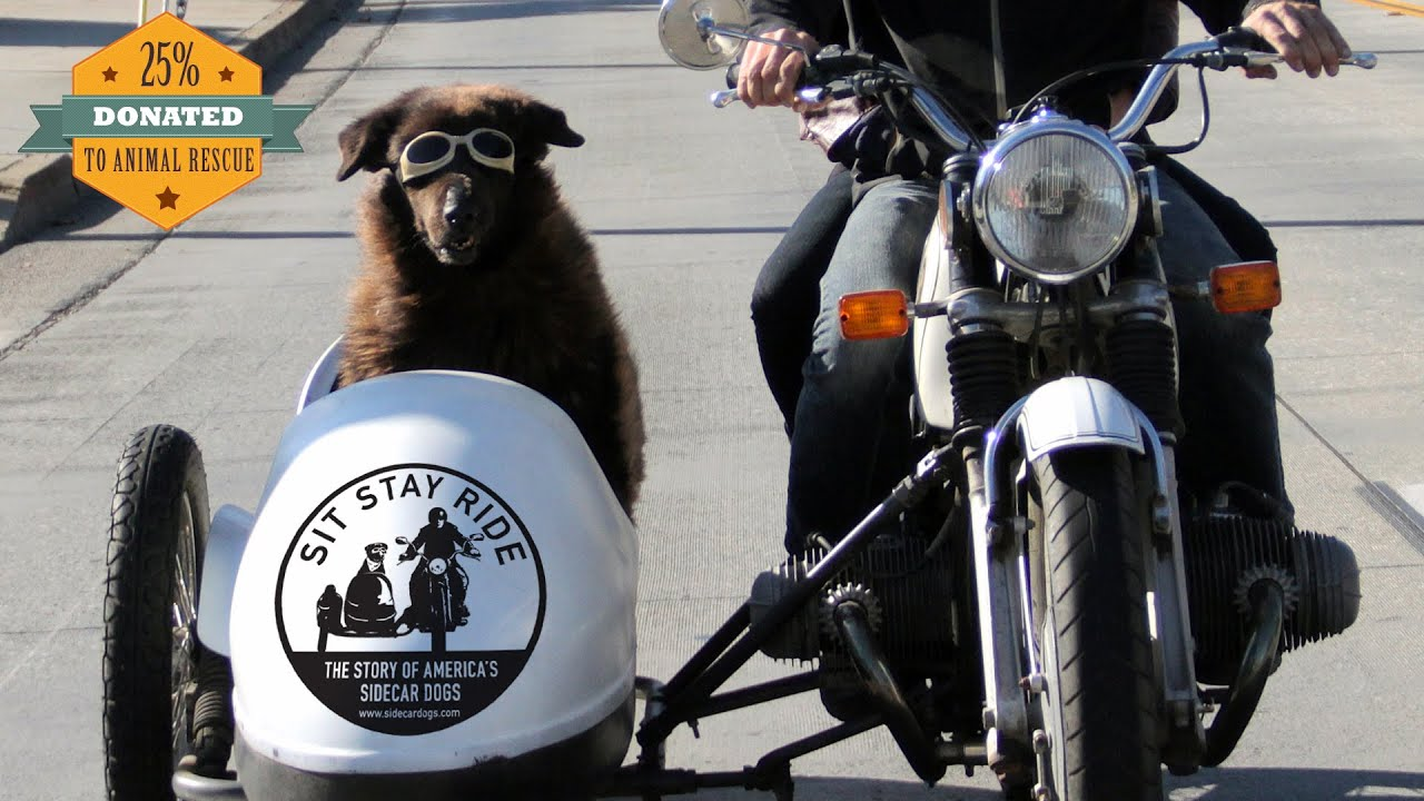 Sit Stay Ride: The Story of America's Sidecar Dogs - Official Trailer