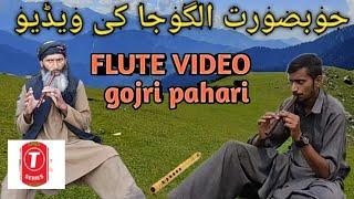 GOJRI ALGOJA //گوجری الگوجا کی ویڈیو //GOJRI AND PAHARI ALGOJA // GOJRI FLUTE // #GOJRIALGOJAVIDEO/