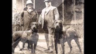 Rottweiler History