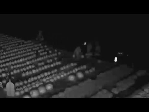 Ghouls Caught On Camera Stealing Pumpkins From Farm Right Before Halloween