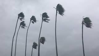 Extreme Hurricane Irma Footage St. Petersburg Tampa Bay Florida September 2017 Hurricane Season