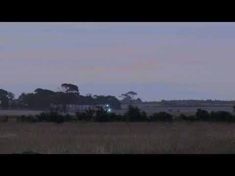 Freight Train In The Distance - PoathTV Australian Trains & Railways 2017