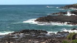 Hawaii Vacation 夏威夷旅行15天
