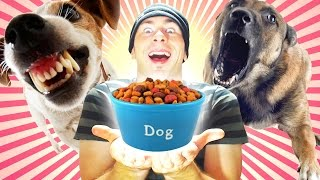 Dog Feeding Simulator an Indie (HORROR?!) - COMPLETE