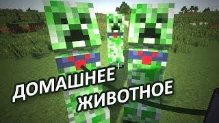 КРИПЕР ДОМАШНЕЕ ЖИВОТНОЕ - Minecraft (Обзор Мода)